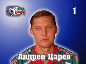 Андрей Царев