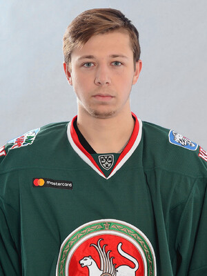 Владислав Подъяпольский