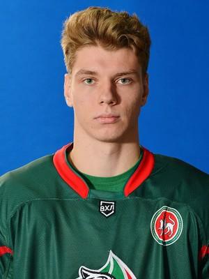 Дмитрий Литвинов